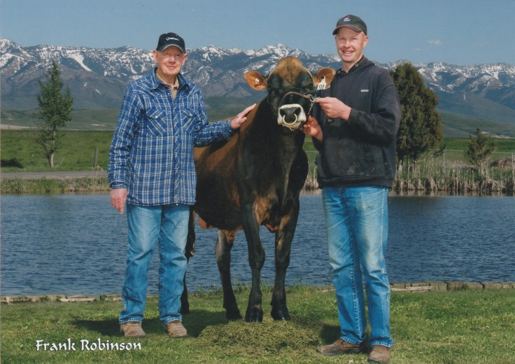 Ward and Wynn Nielsen with Hawarden Implus Premiere jersey bull